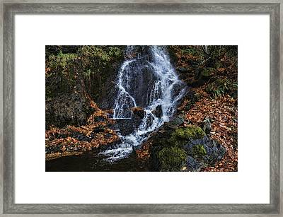 Waterfall Framed Print by Lawrence Christopher