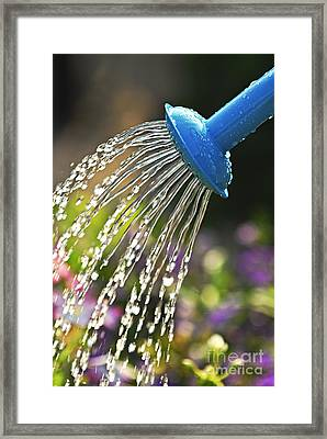 Watering Flowers Framed Print