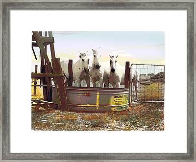 Framed Print featuring the mixed media Watering Hole by Charles Shoup
