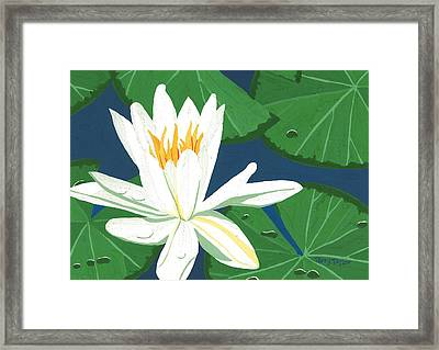 Framed Print featuring the painting Waterlily by Terry Taylor