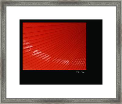 Waterloo 2 Framed Print by Xoanxo Cespon