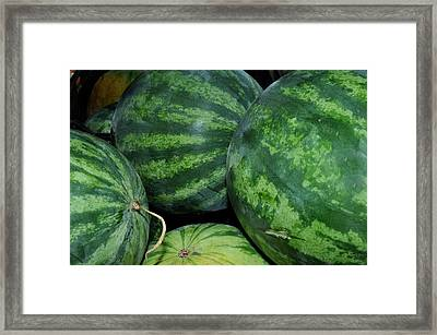 Watermelon Framed Print by Diane Lent