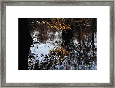 Framed Print featuring the photograph Waterpainting by Tamera James