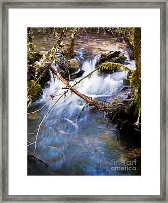 Waters Creek - Spring 2011 Framed Print by Jim Adams