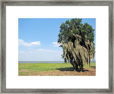 Framed Print featuring the photograph Waterside Dreams by Bill Lucas
