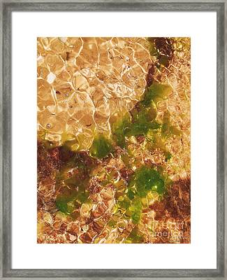 Framed Print featuring the photograph Watty2 by Cazyk Photography