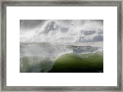 Wave Framed Print by Barbara Walsh