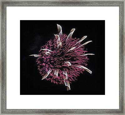 Framed Print featuring the photograph Waved Orb by Chris Anderson