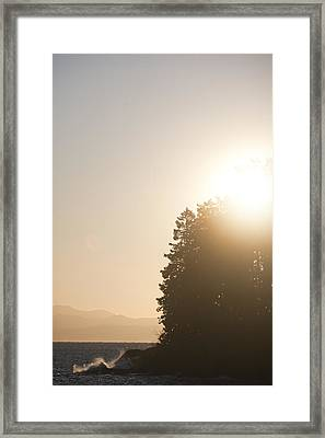 Waves Crash Into The Rainforest Framed Print by Taylor S. Kennedy
