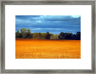 Waves Of Grain Framed Print