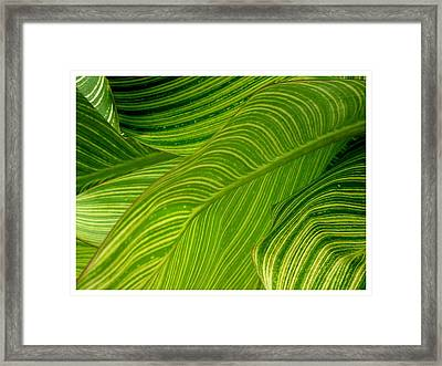 Waves Of Green And Yellow Framed Print