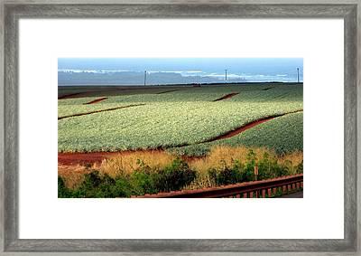 Waves Of Pineapple Framed Print