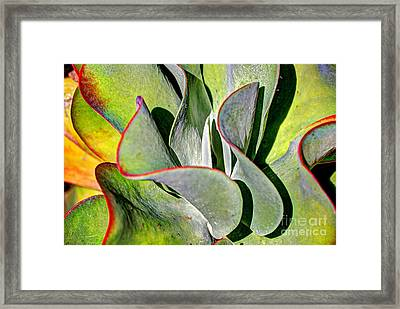 Waves Vegetable 2 Framed Print by Elena Mussi