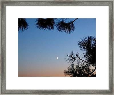 Waxing Crescent Moon 2 Framed Print by Will Borden