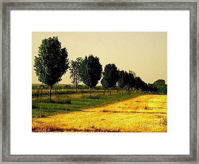 Way Home Framed Print by Joe Jake Pratt