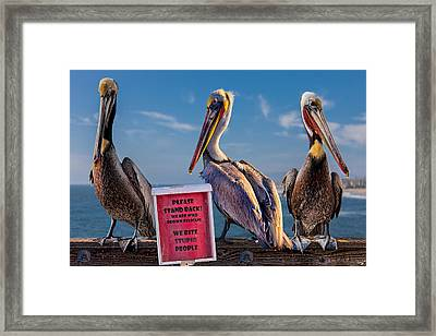 We Bite Stupid People Framed Print by Chris Lord