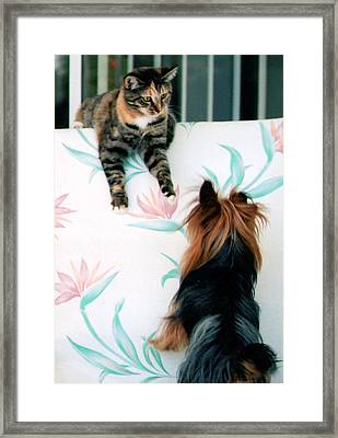 We Can Talk This Over... Framed Print by Tanya Tanski
