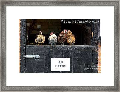 We Don't Give A Cluck Framed Print by Jo