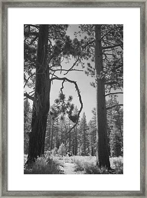 We Two Framed Print