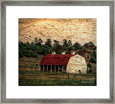 Weathered Barn Framed Print by Michelle Frizzell-Thompson