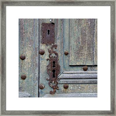 Weathered Framed Print by Lainie Wrightson