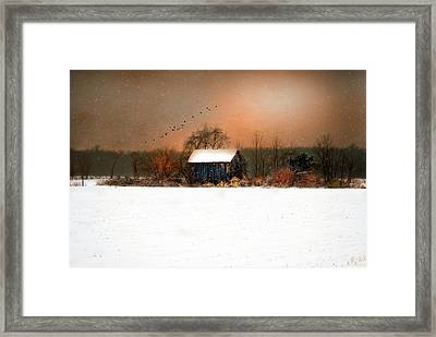 Framed Print featuring the photograph Weathered by Mary Timman