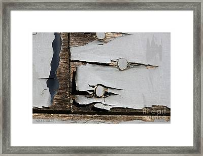 Framed Print featuring the photograph Weathered by Todd Blanchard
