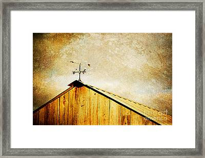 Weathervane Framed Print by Joan McCool