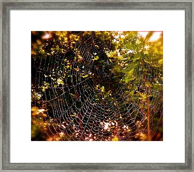 Web Illusion Framed Print by Gloria Warren