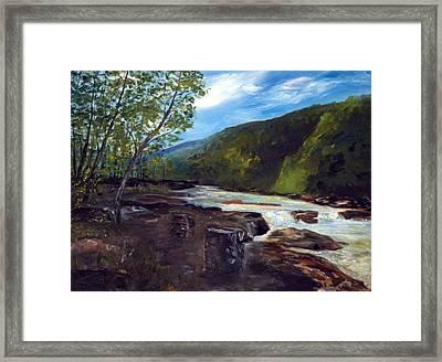 Webster Springs Stream Framed Print by Phil Burton