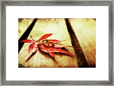 Wedding Rings On Red Framed Print by Meirion Matthias