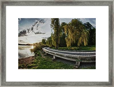 Framed Print featuring the photograph Weeping Willow Boardwalk by Scott Holmes