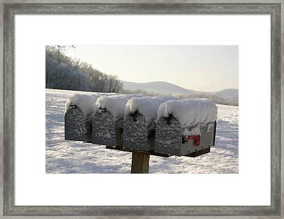 Welcomed Mail Framed Print by Margaret Steinmeyer