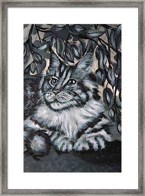 Well Fed Cat Framed Print by Elena Melnikova
