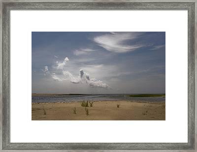 Framed Print featuring the photograph Wellfleet Shore by Michael Friedman