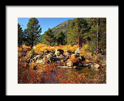 West Fork River Framed Prints