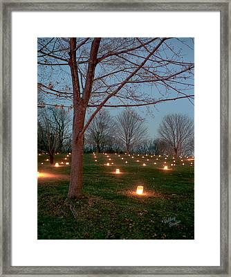 West Woods 11 Framed Print by Judi Quelland