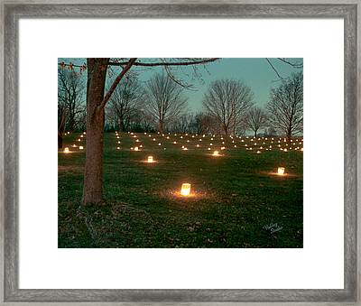 West Woods 2 - 11 Framed Print by Judi Quelland