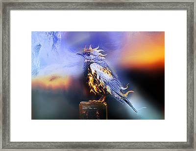 Western Bluebird Fire And Ice Framed Print