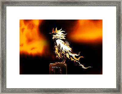 Western Bluebird Fire Framed Print