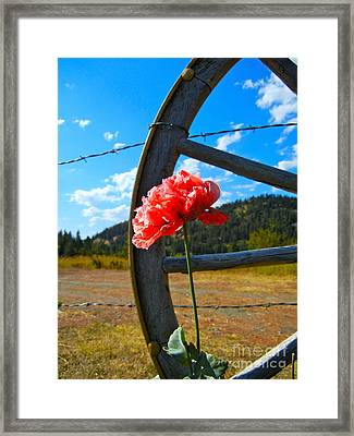 Western Sky Framed Print by KD Johnson