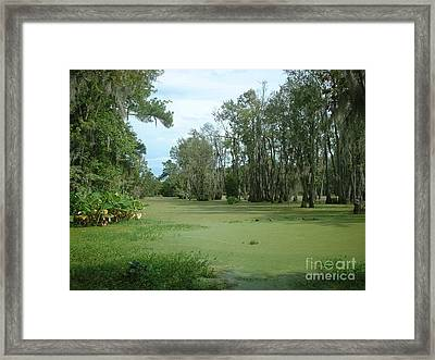 Wet Feet Framed Print