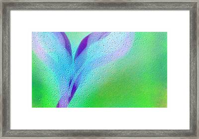 Wet Wings Framed Print by Rosana Ortiz