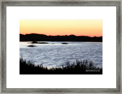 Framed Print featuring the photograph Wetland by Henrik Lehnerer