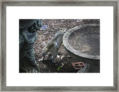 Whadaya Mean There Is No Water Framed Print by Teresa Mucha