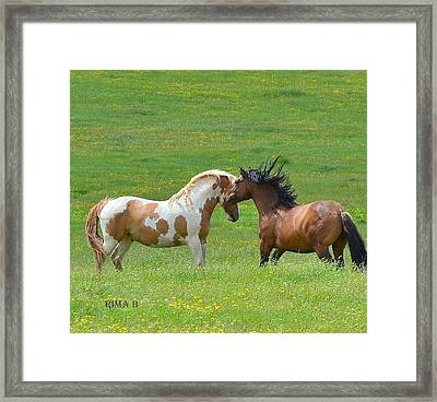 Framed Print featuring the photograph What Are We Doing by Rima Biswas
