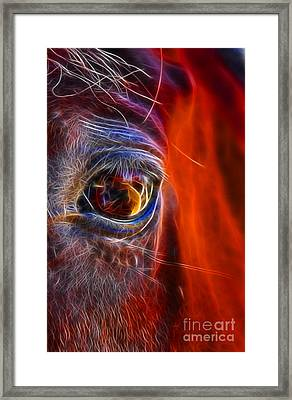 What Are You Looking At Now? Framed Print by Mariola Bitner