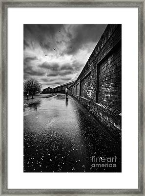 What Do I Know Framed Print by John Farnan