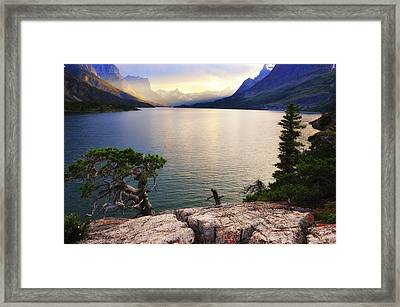 What Dreams May Come Framed Print by Bernard Chen