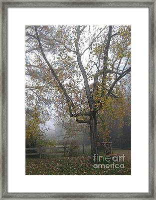 Framed Print featuring the photograph What I Saw  by Nancy Dole McGuigan